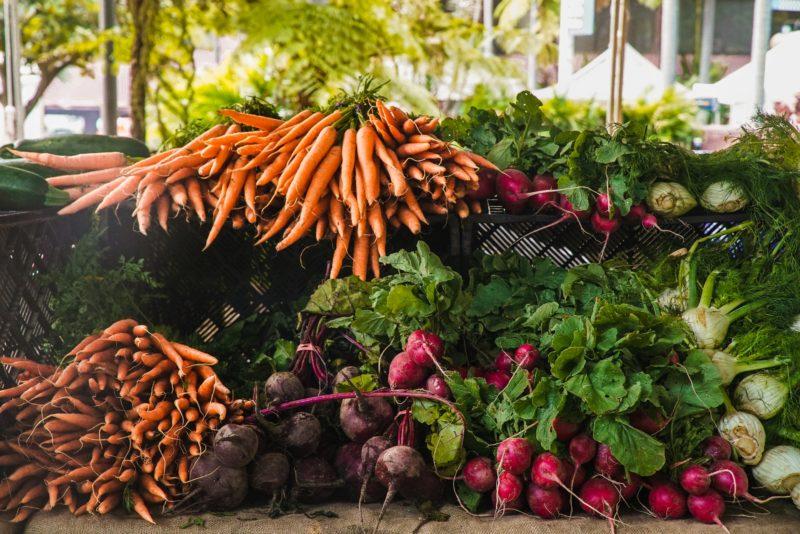 10 Best Online Nutritional Science Bachelor's Degree