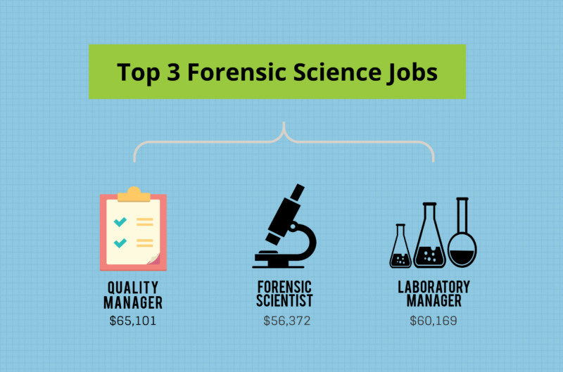 What Can I Do With A Bachelor S In Forensic Science Degree Bachelors Degree Center