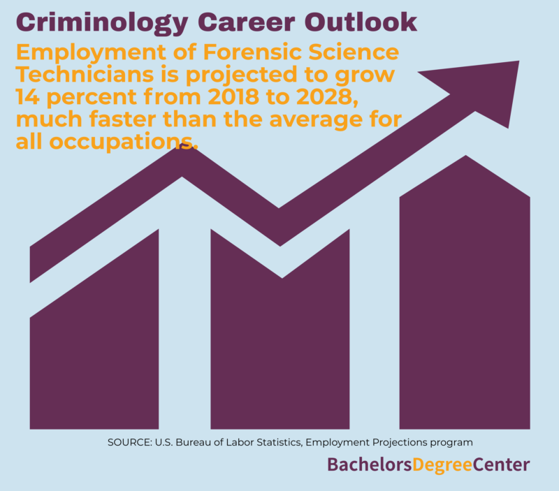 What Can I Do With A Criminology Degree Bachelors Degree Center